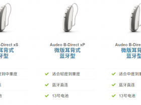 峰力phonak audeo b-direct奥笛神通系列助听器功能